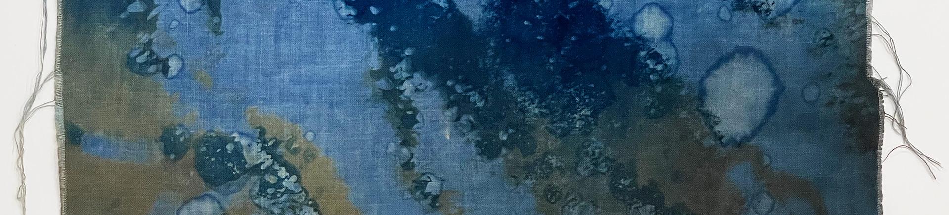 Renata-Buziak_Gullies-and-the-Reef_WCD_2021_renatabuziak.com_banner