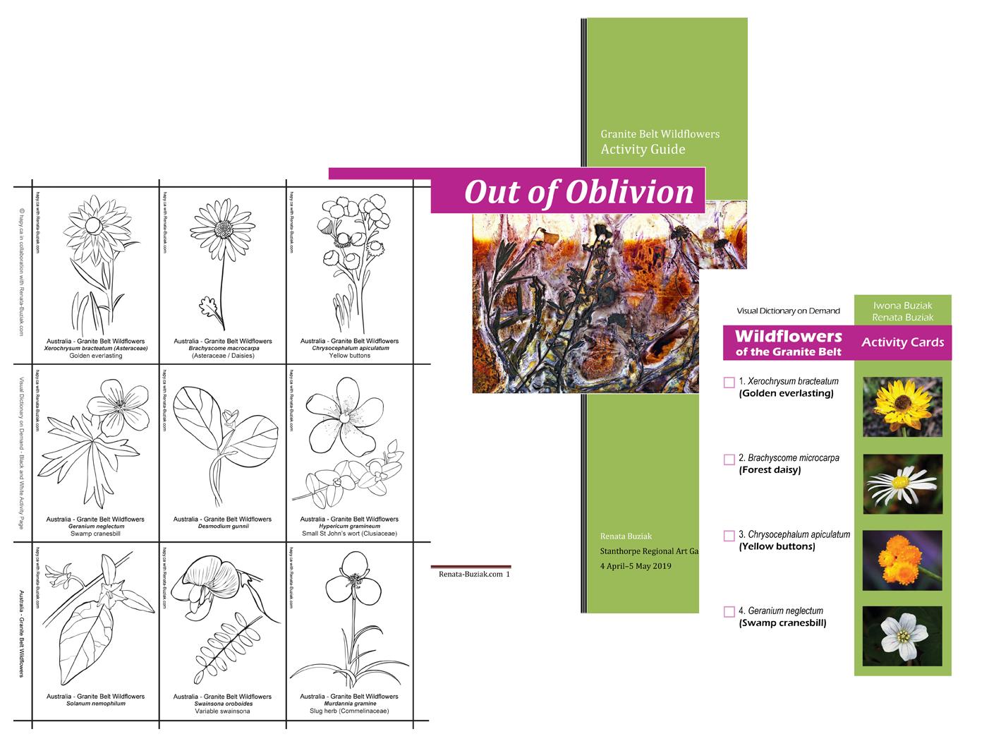 Catalogue Cover-Medicinal-Plant-Cycles-Renata Buziak-renatabuziak.com